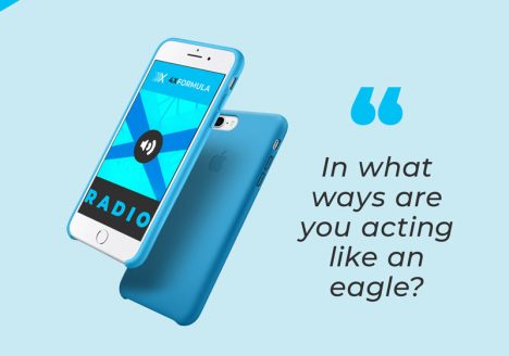 Online Real Estate Training Episode 44: Eagle or Chicken